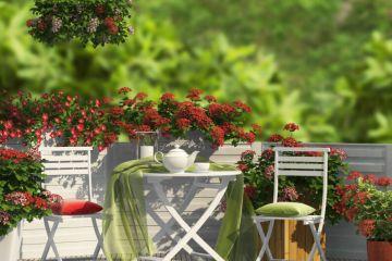 €3.1million purchase and renovation of French Riviera villa